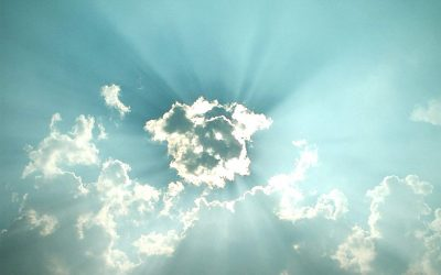 Ontwikkelingen zonnepanelen en omvormers in Nederland