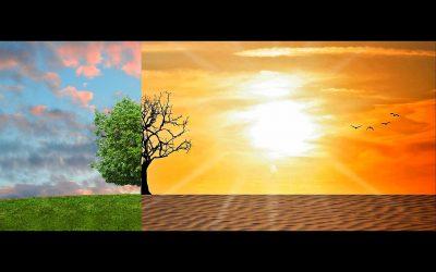 Grote ambities, weinig daadkracht bij de klimaatplannen van gemeenten.